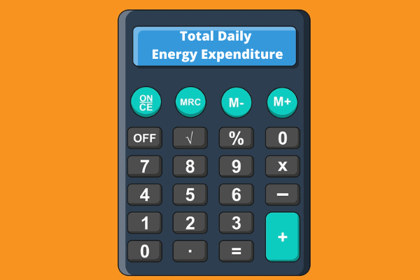 total daily energy expenditure for losing fat