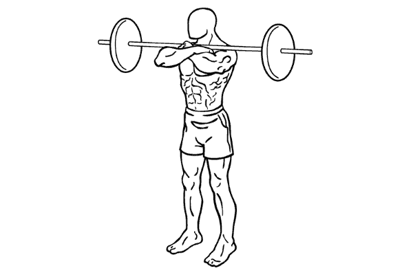 Example of a front squat (drawn figure)