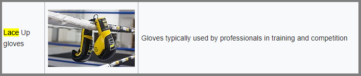 Screenshot of a website which explains why lace up gloves are better for competition