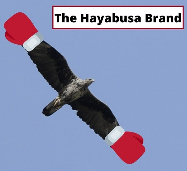 Hayabusa brand with an eagle flying in the air