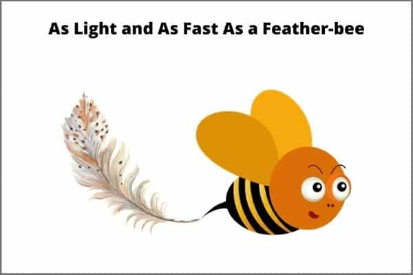 A bee and a feather illustration representing a fast and light punch